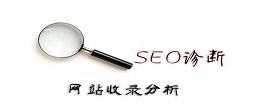 SEO诊断,收录分析